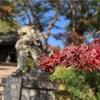 吉野山食べ歩きコース。
