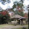 【かき氷お店状況】 11月奈良公園周辺ぶらぶら