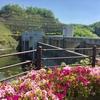ハイヅカ湖畔の森キャンプ場⑶