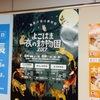 野毛山動物園のイベント2017よこはま夜の動物園8月の土日祝だよ(イベント)桜木町駅周辺情報