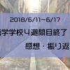 〜語学学校4週間目終了〜 感想・振返り・5週間目への意気込み