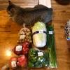 お腹が空いたらトマト 〜ジャンキーな食生活の改善スタート〜