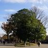 上野公園の記憶