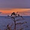 サメット島 「サンセットビュー・ポイント Tay Koh Sun Set View Point」からタイ本土を望む。。。