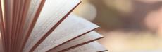 初めてKindleで読むことができた小説「カー・オブ・ザ・デッド」