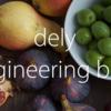 データサイエンティストと機械学習エンジニアをやって思ったこと