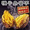 焼き芋オーブン使わず電子レンジで簡単早く美味しい作り方・レシピ