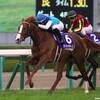 タコイチの【今週の勝負レース】NHKマイルC!