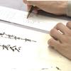 古文書調査の作業風景