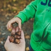 子供の指にトゲが刺さった!そんな時は何科に行けばいいの?