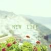 新しい生活が始まります