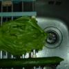 私と 食事 :味、どうなん?生姜焼き (3)