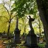 Brompton Cemetery(ブロンプトンセメタリー)