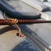 屋根の上の鉄筋は取り除くに限る