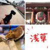 OsmoPocketといく浅草の旅|ササモモの新ガジェット日記