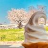 ソフトクリーム soft serve
