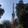 東京チャリ散歩☆ 春だなぁ🌸