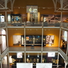 スコットランド♡これまで訪れた博物館の中で一番!ナショナルミュージアム