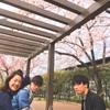 目黒川お花見ランチ with 新人さん #gifteeな日々