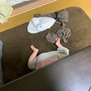 娘1歳2か月。最近の娘のマイブームと、睡眠時間のこと。