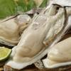 牡蠣にあたって出る症状は下痢や嘔吐だけじゃない!アレルギー後も食べれたオススメの牡蠣といろんなアレルギーについて