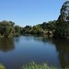 コバーグレイク公園散策 メルボルン オーストラリア