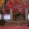 京都・洛西 - 紅葉散る。冬支度進む浄住寺。