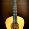 サダチルシア:2本目のフラメンコギター~Hirotaka Yanagibashi Blanca
