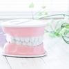 セラミック治療開始!初回の流れと、仮歯
