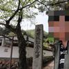 城-90-竹田城 2010.5.4(祝)