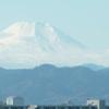 12月14日 ようやく霊峰富士