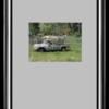 GTMUIImage+Resizeを使って画像の簡単リサイズ