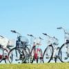 ママチャリは自転車じゃない!? ロードバイクこそ本当の自転車じゃないの?