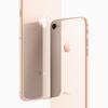 iPhone 8・iPhone 8 Plus店頭デモ機ファーストインプレッション