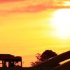 気仙沼の日の出、防災無線の「恋はみずいろ」