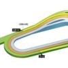 第396R 京都競馬 シルクロードS(GⅢ) 参考データ