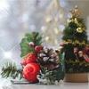 詰めの甘いクリスマス準備!O型両親の洗礼を受けるむすめ