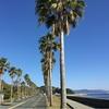 愛知県蒲郡 西浦で車中泊旅を楽しもう