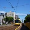 黄色い電車で黄色い鯖江の蕎麦屋に行く