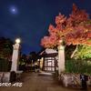 江戸東京たてもの園の紅葉ライトアップ
