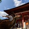 奈良散策 好きなんです その2