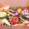 【リウマチに良い食事】冷えと腸内環境を改善して免疫力アップを目指す!