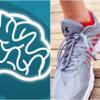 走り続けても脳の老化を5倍遅らせることができる。