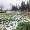 ヨルダンで雪!