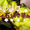【ホックホク】つくばで異常にとろっとろの焼き芋を発見!【つくば石焼芋】