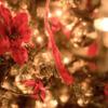 """クリスマスは幸せなのに""""クリスマス・イブ""""は切なく感じる理由を考えてみる"""
