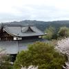 2021年 京都の桜をサイクリングで巡る4日間④