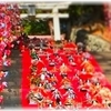 素盞嗚神社 ~伊豆稲取の石段ひな飾り~