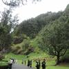 男だってハワイが好きだ! 2016 1日目 ヌアヌパリ展望台・マジックアイランド・丸亀うどん