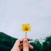 🌙 占い師、「小さな幸せを数えてみる」の巻